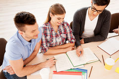 Students studying. Stock Photography