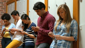 Students on their smartphone leaning on lockers. In college stock video