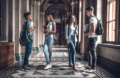 Students together. Group of beautiful students standing in the university hall and chatting with each other.  stock photos