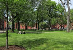 Students and tourists resting on the lawn and walking around the Harvard Yard, the histor royalty free stock photography