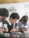 Students Using Microscopes In Laboratory. High school students using microscopes in laboratory Royalty Free Stock Images