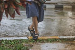 Students walk to the flood. After rain in school Stock Image