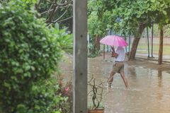 Students walk to the flood. After rain in school Royalty Free Stock Photos