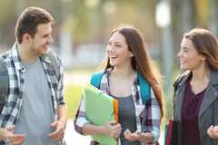 Students walking and talking in a campus. Front view of three students walking and talking in an university campus Stock Images