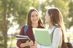 Students walking and talking in a campus. Two happy students walking and talking each other in a campus at sunset with a warm light Royalty Free Stock Image