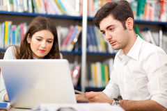 Students at work in a library Stock Photography