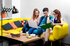 Students working on the couch Stock Images