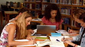 Students working together in the library. In ultra hd format stock footage