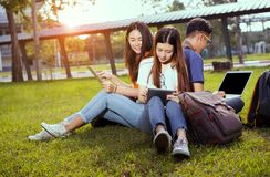 Students young asian together working study stock images