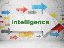 Studera begrepp: pil med intelligens på grungeväggbakgrund Royaltyfri Fotografi