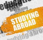 Studera utomlands på Brickwall vektor illustrationer