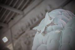 Studi della scultura di Nicoli, Carrara, Italia Fotografia Stock