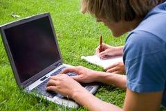 Studi di estate Immagine Stock