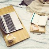 Studie eller arbete hemma på soffan Fotografering för Bildbyråer