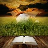 Studie für stützbares Leben Lizenzfreies Stockbild