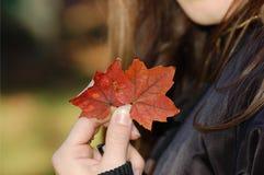 Studie in Kanada lizenzfreies stockbild