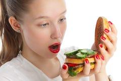 Studie van een sandwich Stock Fotografie