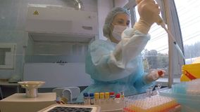Studien av influensaviruset i laboratoriumet stock video