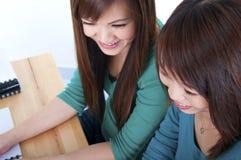 Studien-Partner stockbilder