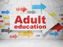Studieren des Konzeptes: Pfeil mit Erwachsenenbildung auf Schmutzwandhintergrund stock abbildung