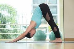 Studio de classe de yoga, pose faisante principale de dauphin de femme asiatique, Healthly photo libre de droits
