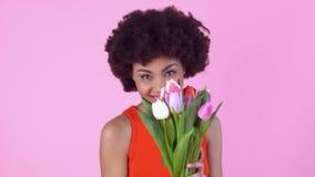 Studio de jeune femme d'isolement le jour rose du ` s de femmes dans les tulipes sentantes de robe rouge en gros plan banque de vidéos