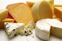 Studio della raccolta del formaggio Fotografie Stock