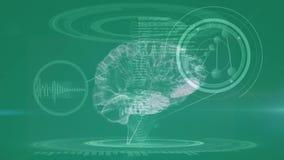 Studio di un cervello illustrazione vettoriale