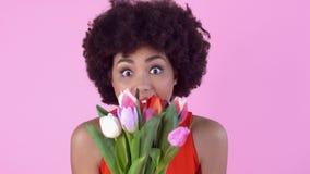 Studio för ung kvinna som isoleras på rosa dag för kvinna` s i hållande tulpanbukett för röd klänning