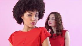 Studio för unga kvinnor som isoleras på rosa posera för dag för kvinna` som s är sinnligt arkivfilmer