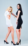 Studio fashion shot: competition of two lovely women (blonde and brunette) Stock Images
