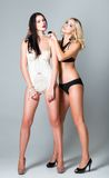 Studio fashion shot: opposition of two sexy women (blonde and brunette) in underwear Stock Photography