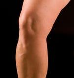 Studio, ginocchio della donna Fotografia Stock