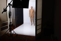 Studio het schieten Stock Foto's