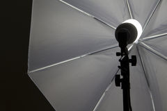 Studio light. A continuous studio light for photography with umbrella stock photo