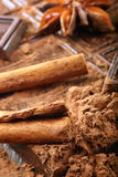 Studio macro cocoa powder dark chocolate and cinnamon Royalty Free Stock Photo