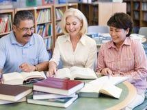 studio maturo degli allievi delle biblioteche Fotografia Stock Libera da Diritti