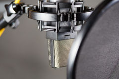 Studio mic with pop protector for voice recording Royalty Free Stock Photo