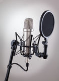 Studio microphone on a gray background Stock Photography