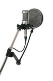 Studio microphone with pop filter Stock Photos