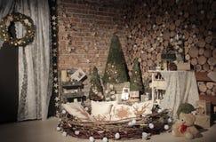 Studio naturale dell'albero del nuovo anno Fotografia Stock Libera da Diritti