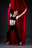 Studio photo of beautiful talented dancer posing Royalty Free Stock Image