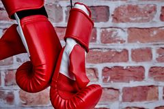 Boxing Gloves. A studio photo of boxing gloves Royalty Free Stock Images