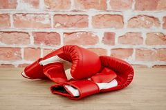 Boxing Gloves. A studio photo of boxing gloves Royalty Free Stock Image