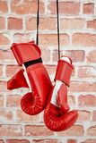 Boxing Gloves. A studio photo of boxing gloves Stock Image
