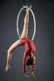 Studio photo of cute dancer posing on aerial hoop Stock Image