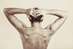Studio photography of naked back of young man Stock Images