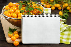 Studio photography of open blank ring bound notebook surrounded by a fresh fruits plums and pencil on dark wooden table. Open blank ring bound notebook Royalty Free Stock Photo