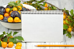 Studio photography of open blank ring bound notebook surrounded by a fresh fruits plums and pencil on white wooden table. Open blank ring bound notebook Royalty Free Stock Photo
