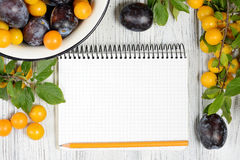 Studio photography of open blank ring bound notebook surrounded by a fresh fruits plums and pencil on white wooden table. Open blank ring bound notebook Stock Photography